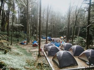 Cameron Camping sites