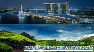 Singapore-to-Cameron-Highlands