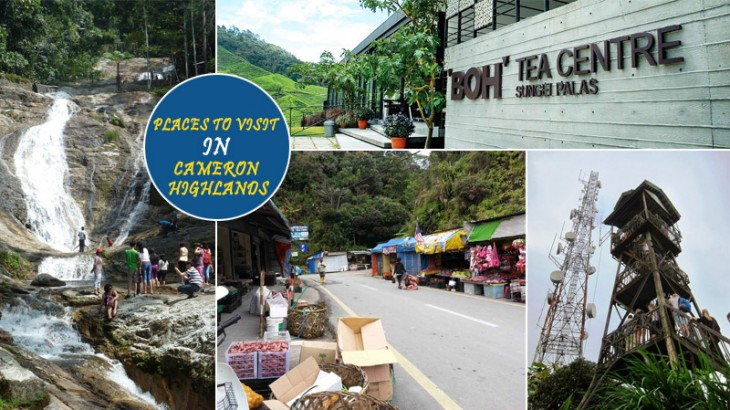 places to visit cameron highlands